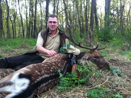 Hunting in Transylvania - Romania, hunting weapons and gear store